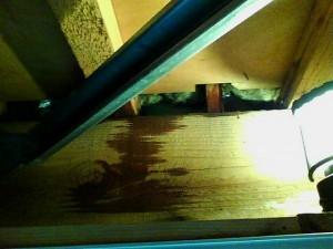 外壁塗装立川市雨漏り診断⑥